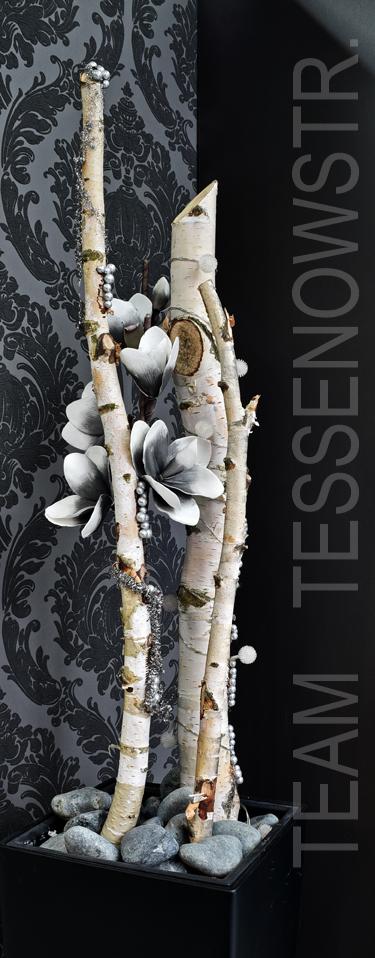 Team_Tessenow