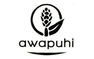 awa_1